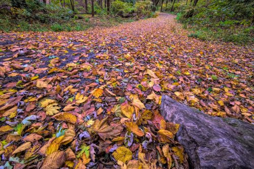 The Northwest Lancaster County River Trail: A Photographer's Perspective